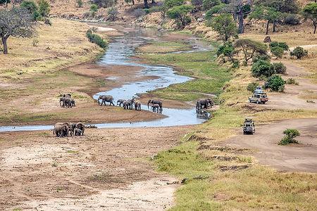 Safari vehicles and elephants near a stream at Tarangire National Park | Tanzania | Shots and Tales