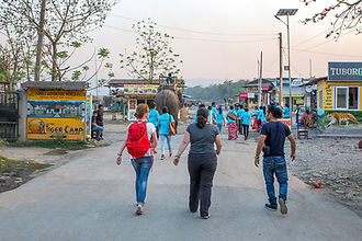 People walking and elephant in Sauraha, Nepal