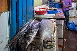 Fish for sale in  Shop in Kathmandu, Nepal