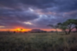 Amazing African sunset in the Serengeti during a safari in Tanzania | Shots and Tales | Dik Dik Campsite