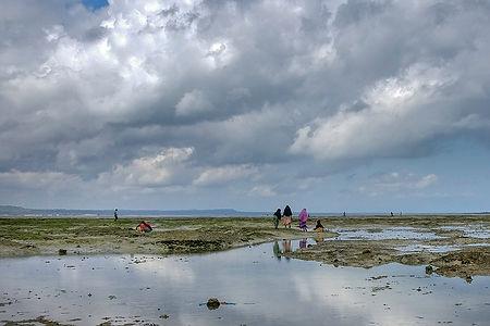 Children hunting for octopus in low tide at the fishing village in Kigunda, Zanzibar, Tanzania | Shots and Tales