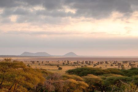 Tarangire National Park view from Sangaiwe Lodge | Tanzania | Shots and Tales