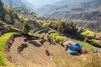 Trekking from Swanta to Dhan Kharka, Annapurna-Dhaulagiri Community Trail, Nepal