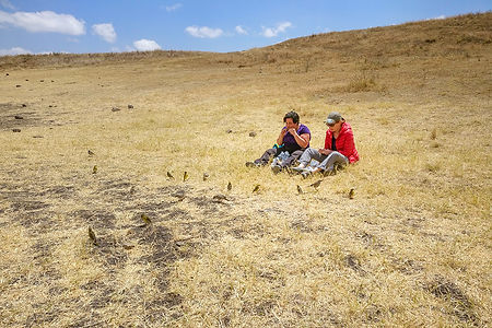 Two women eating with birds watching them | Ngorongoro Crater | Tanzania | Shots and Tales