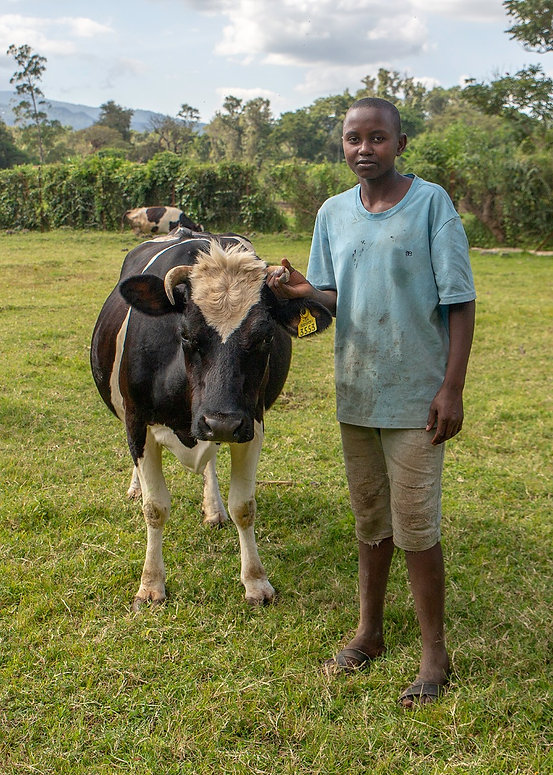 Child in The Sky Project - Watoto Foundation | Shots and Tales | Boy with Cow | Arusha Tanzania