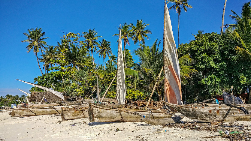 Nungwi Beach | Zanzibar | Tanzania | Traditional Boats | Shots and Tales