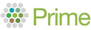 prime_fig6.jpg
