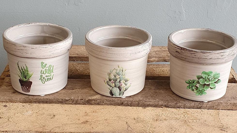 Trio of pots