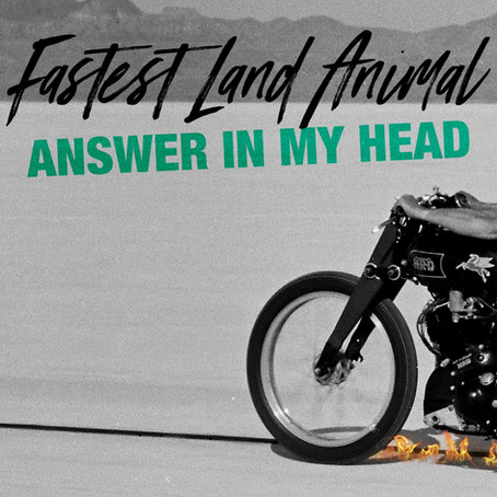 FASTEST LAND ANIMAL - Video Premiere of 'Answer In My Head' on HardRockCore.net