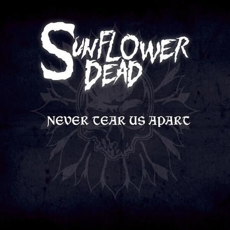 SUNFLOWER DEAD cover INXS