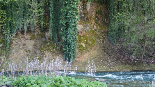 Les berges de la Sarine sont sauvages et d'une incroyable beauté