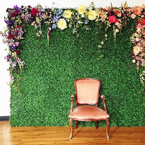 Green Wall Panel - In House Rental