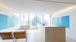 250-W-55-Street-38th-Floor-New-York-NY-S