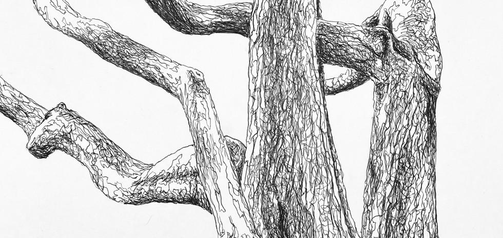 Branche II