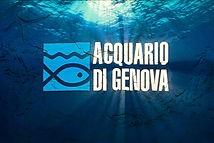 acquario genova.jpg