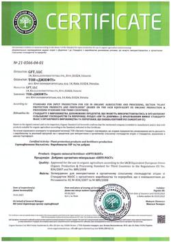 21__G_GFT_Certificate_In