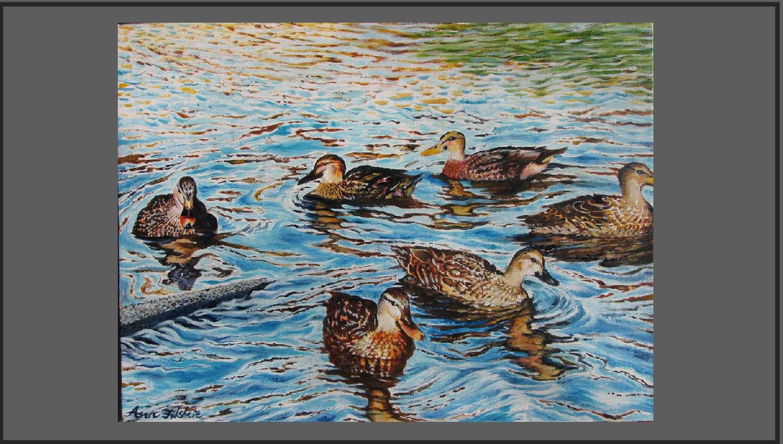 S180 Ducks on the Cam.Price: $180