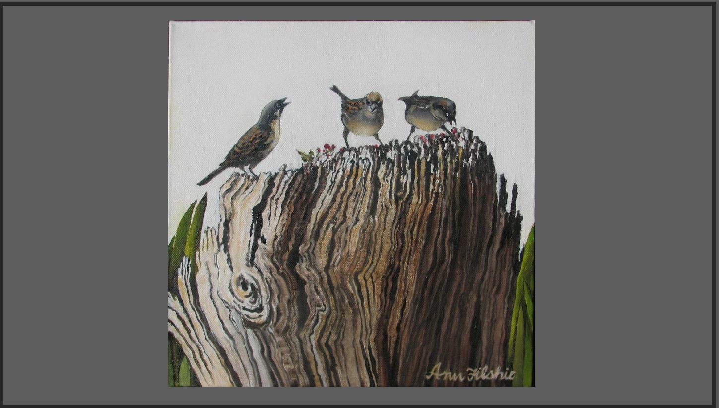 S205 Just sparrows $135
