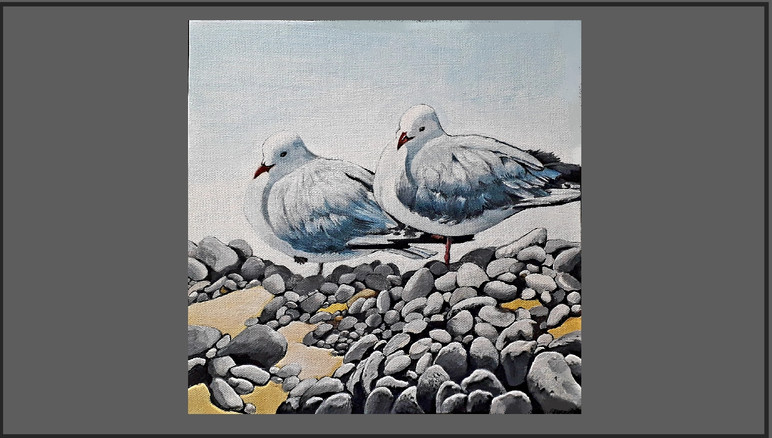 S202 Gulls at Amberley. Price: $270