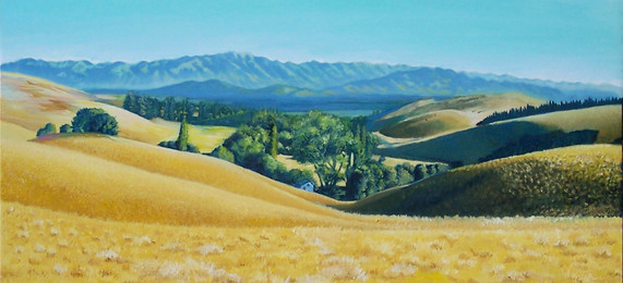 Blackhills scene. Waikari