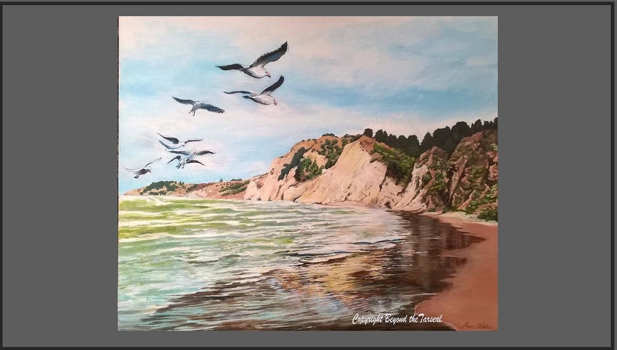 S182 Gulls over Gore bay Price:$450