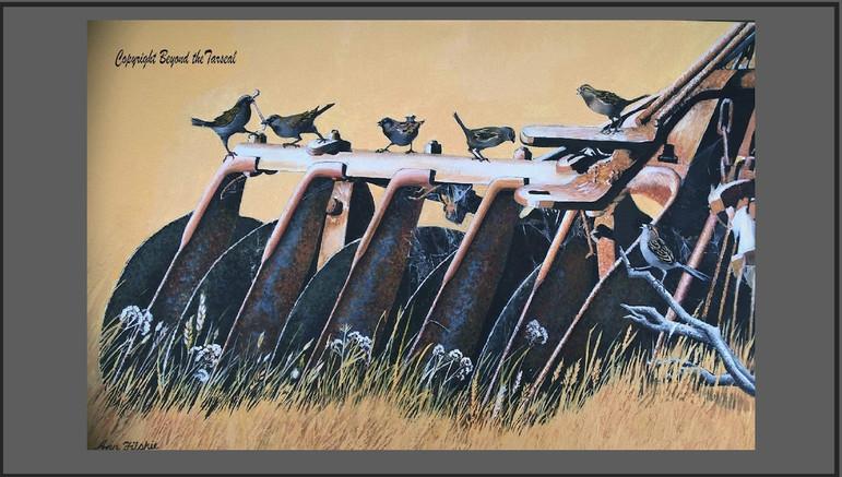 S192 Early bird.Price: $325