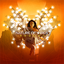 Nature of Wires - Reborn - 225px.png