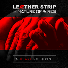 Nature of Wires - A Heart so Divine - 22