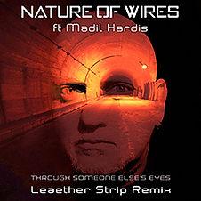 TSEE remix cover 250px.jpg