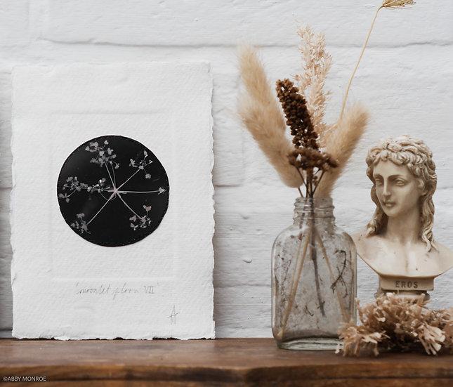 Moonlit Flora VII