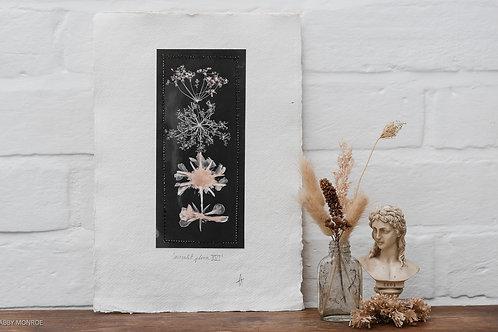 Moonlit Flora VI
