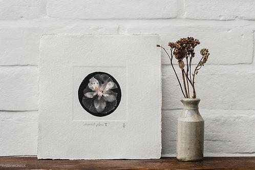 Moonlit Flora X