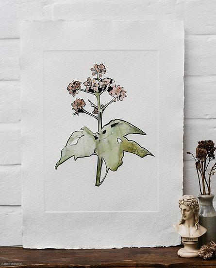 Moonlit Flora XVIII