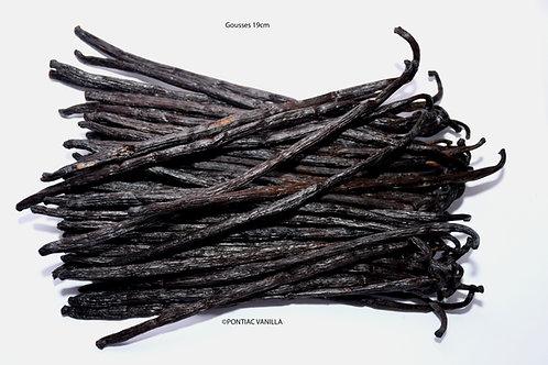 2 gousses Vanille Bourbon noire gourmet de Madagascar 18 à 19cm