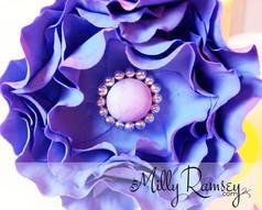violetbeautycloseup.jpg