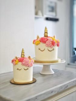 Cake & Smash Cake