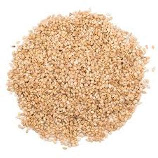 Graine de Sesame doré