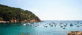 coast with boats