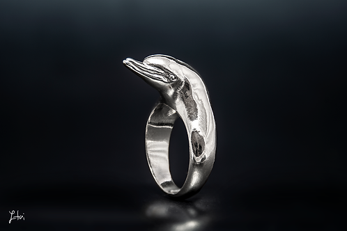 the Dolphin ring