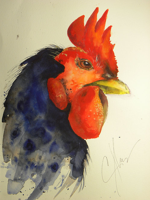 George the rooster