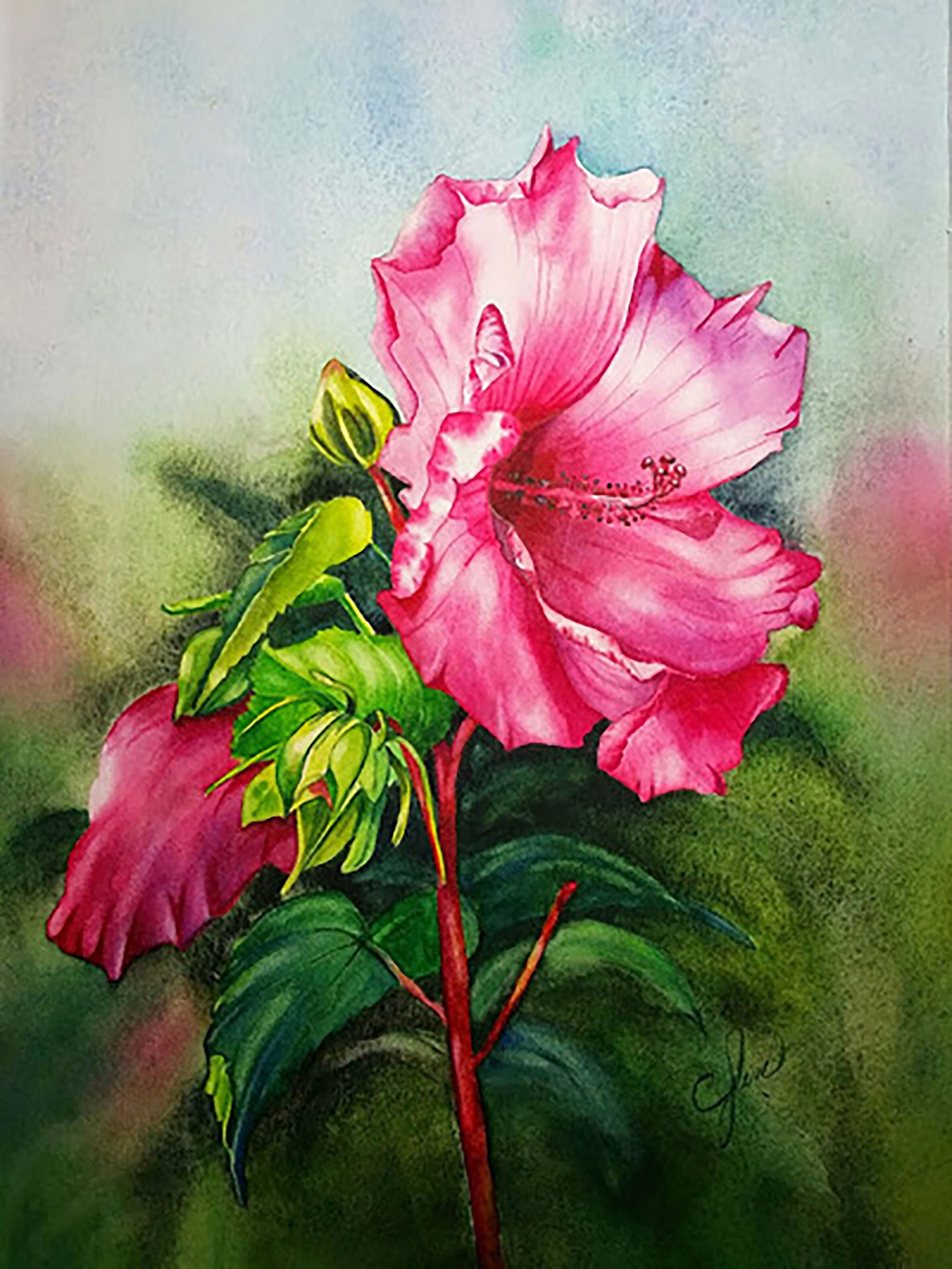Watercolor / private tutoring