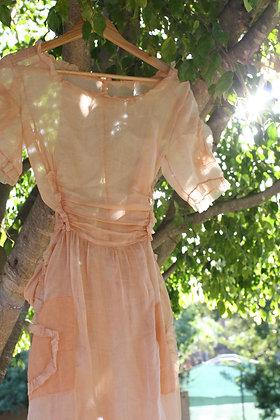 Antique Organza Peach Sheer Dress | S/M