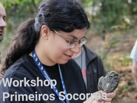 Workshop de Primeiros socorros de aves