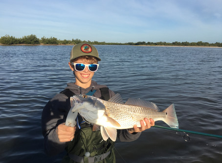 TRANSITION HAS TROUT, REDS AND SNOOK ON THE MENU