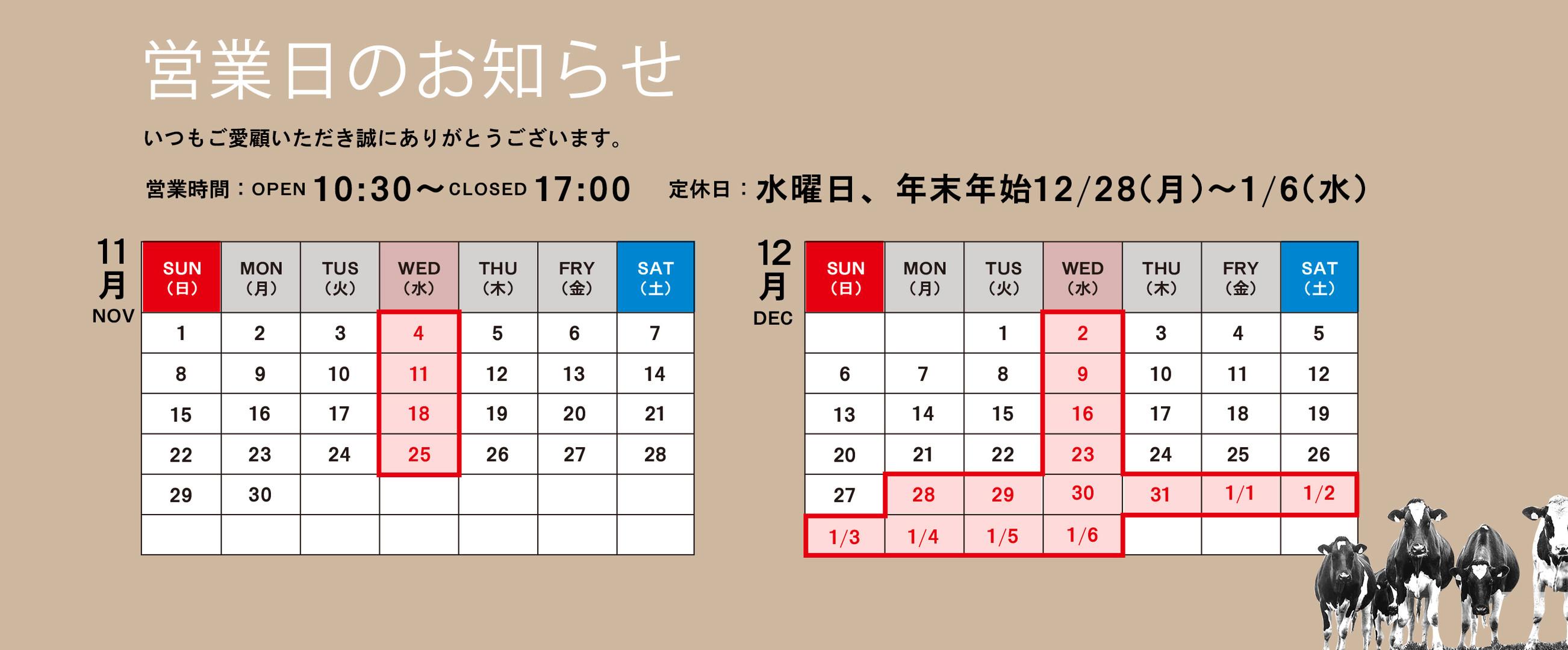 news13.jpg