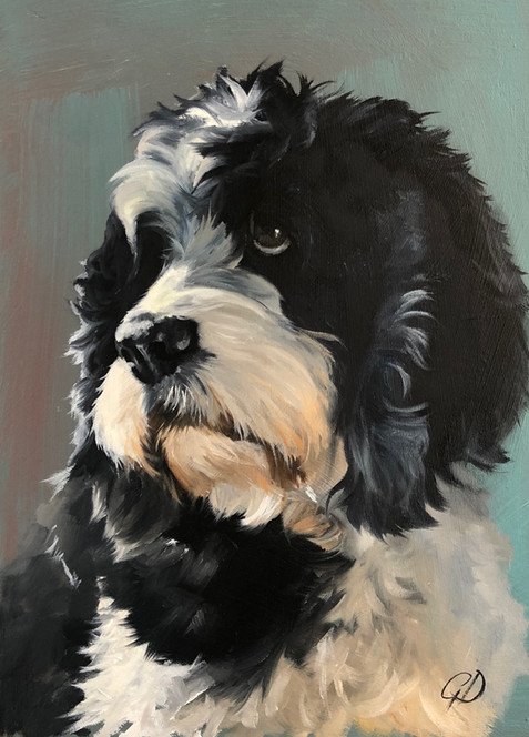 1 of Gail's 50 dog commissions