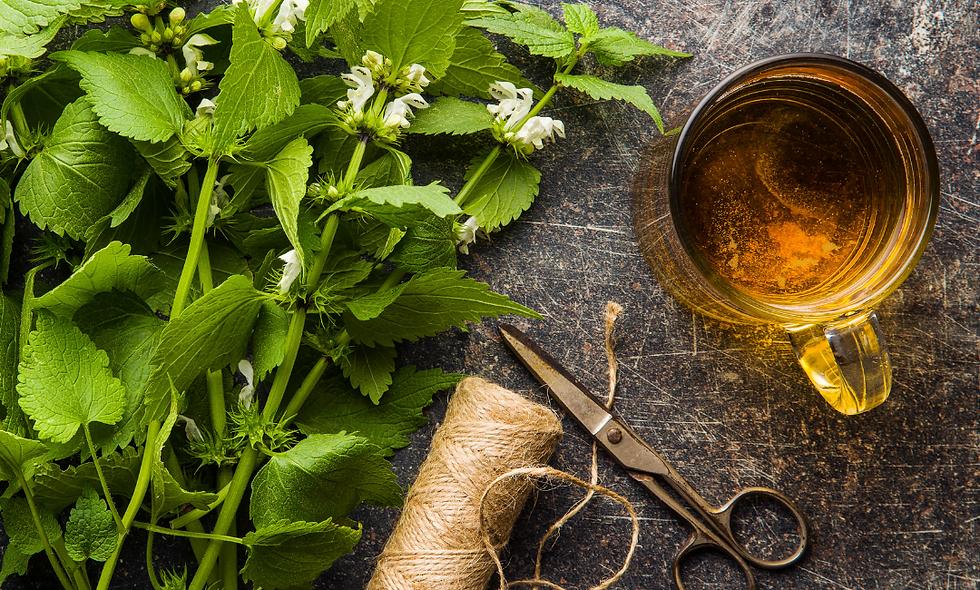 Dried Herb Tea - Nettle (30 gms)