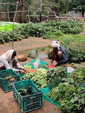 organic-vegetable-farmers-delhi-ncr.jpg
