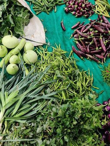 organic-green-leafy-vegetables-delhi.jpg