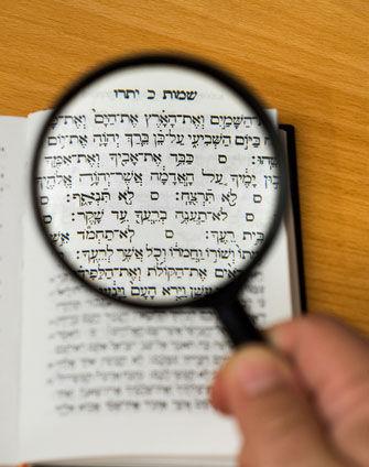 torah-study-magnified.jpg